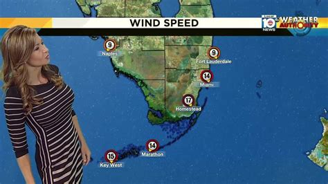 Wind adds to chill factor in South Florida