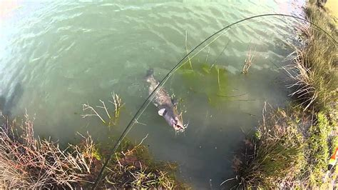 Catfish on a Crappie Pole - YouTube